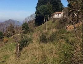 Nel cuore dei Nebrodi, a due passi dall'Etna